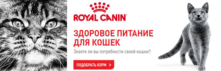 Royal Canin для кошек